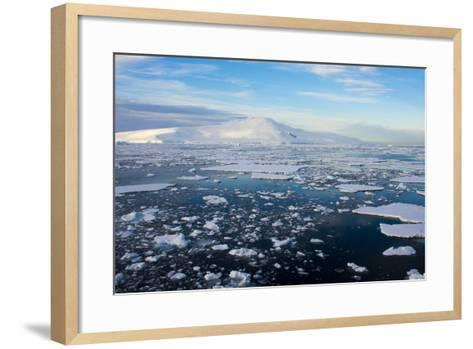 Antarctica. Near Adelaide Island. the Gullet. Ice Floes and Brash Ice-Inger Hogstrom-Framed Art Print