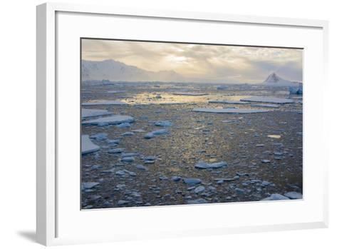 Antarctica. Near Adelaide Island. the Gullet. Ice Floes at Sunset-Inger Hogstrom-Framed Art Print
