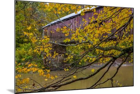 Cox Ford Covered Bridge over Sugar Creek in Parke County, Indiana-Chuck Haney-Mounted Photographic Print
