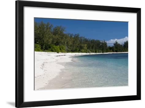 Denis Island, Seychelles-Sergio Pitamitz-Framed Art Print