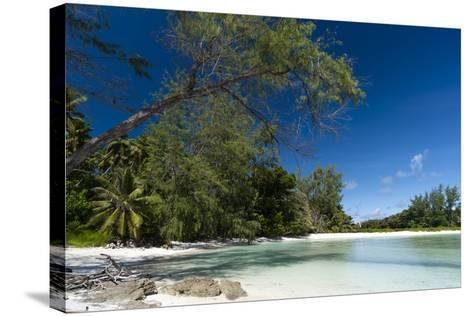 Denis Island, Seychelles-Sergio Pitamitz-Stretched Canvas Print