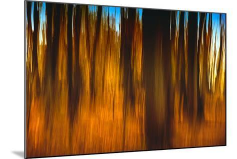 An Impressionistic in Camera Blur of Colorful Autumn Trees-Rona Schwarz-Mounted Photographic Print