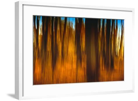 An Impressionistic in Camera Blur of Colorful Autumn Trees-Rona Schwarz-Framed Art Print