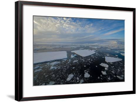 Antarctica, Near Adelaide Island. the Gullet. Ice Floes and Brash Ice-Inger Hogstrom-Framed Art Print