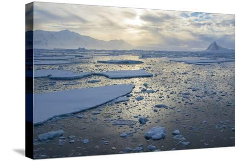 Antarctica, Near Adelaide Island. the Gullet. Ice Floes at Sunset-Inger Hogstrom-Stretched Canvas Print