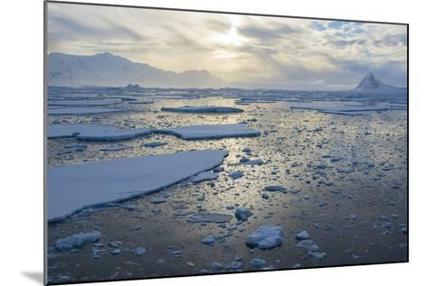 Antarctica, Near Adelaide Island. the Gullet. Ice Floes at Sunset-Inger Hogstrom-Mounted Photographic Print