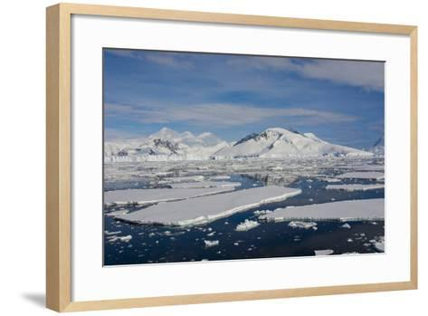 Antarctica. Antarctic Circle. Adelaide Island. the Gullet. Ice Floes-Inger Hogstrom-Framed Art Print