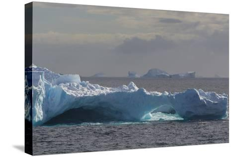 Antarctica. South of the Antarctic Circle. Iceberg-Inger Hogstrom-Stretched Canvas Print