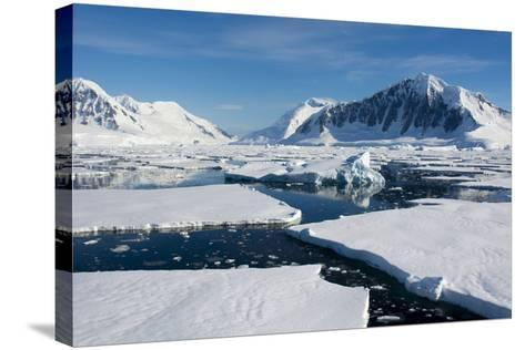 Antarctica. Antarctic Circle. Adelaide Island. the Gullet. Ice Floes-Inger Hogstrom-Stretched Canvas Print