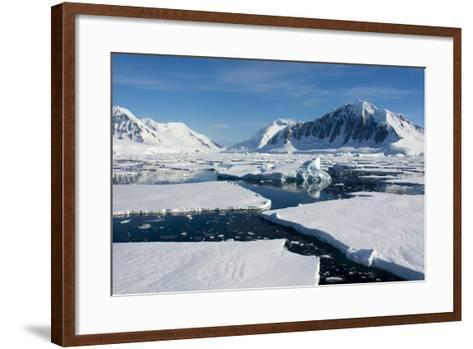 Antarctica. Antarctic Circle. Adelaide Island. the Gullet. Ice Floes-Inger Hogstrom-Framed Art Print