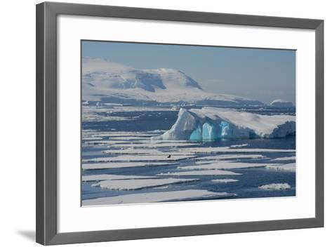Antarctica. Antarctic Circle. the Gullet. Iceberg and Ice Floes-Inger Hogstrom-Framed Art Print