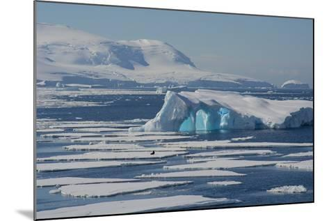 Antarctica. Antarctic Circle. the Gullet. Iceberg and Ice Floes-Inger Hogstrom-Mounted Photographic Print
