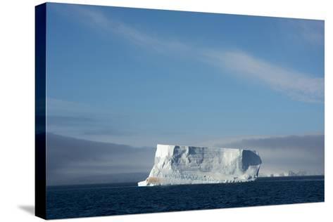 Antarctica. Antarctic Sound. Tabular Iceberg-Inger Hogstrom-Stretched Canvas Print