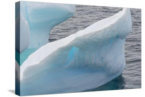 Antarctica. Argentine Islands-Inger Hogstrom-Stretched Canvas Print