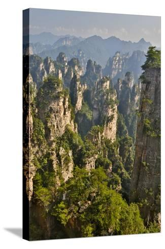 China, Hallelujah Mountains, Wulingyuan, Landscape and Many Peaks-Darrell Gulin-Stretched Canvas Print