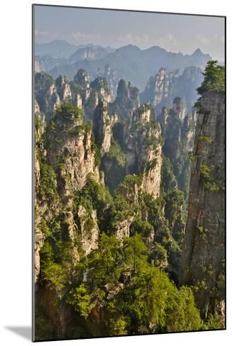 China, Hallelujah Mountains, Wulingyuan, Landscape and Many Peaks-Darrell Gulin-Mounted Photographic Print