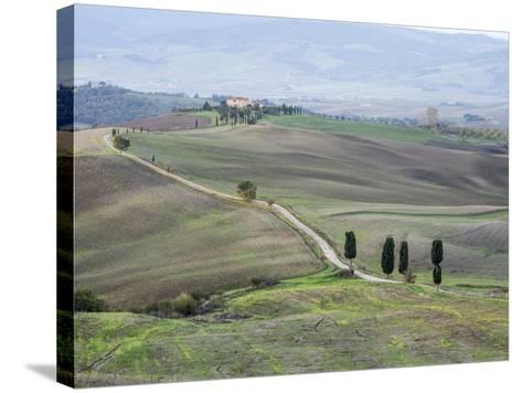 Europe, Italy, Tuscany. Tuscan Landscape in Autumn-Julie Eggers-Stretched Canvas Print