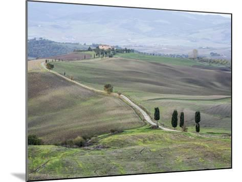 Europe, Italy, Tuscany. Tuscan Landscape in Autumn-Julie Eggers-Mounted Photographic Print