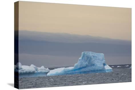 Antarctica. Brown Bluff. Bright Blue Iceberg-Inger Hogstrom-Stretched Canvas Print