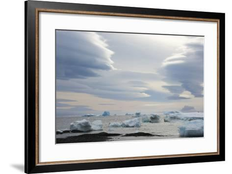 Antarctica. Brown Bluff. Lenticular Clouds Show Katabatic Winds-Inger Hogstrom-Framed Art Print