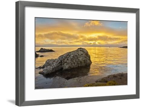 Sunset, Bird Island, Point Lobos State Reserve, California, USA-Michel Hersen-Framed Art Print