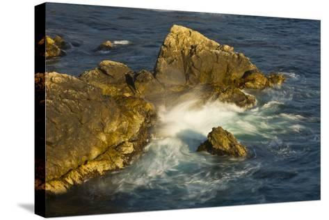 Surf and Rocks, Rocky Creek Area, Big Sur, California, USA-Michel Hersen-Stretched Canvas Print