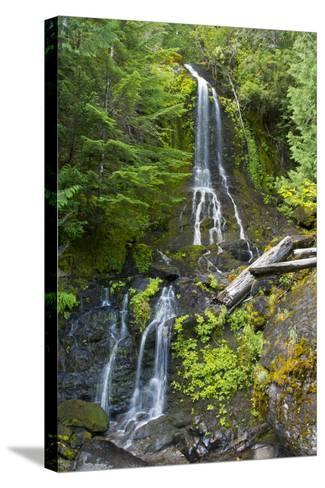 Falls Creek Falls, Mount Rainier National Park, Washington, USA-Michel Hersen-Stretched Canvas Print