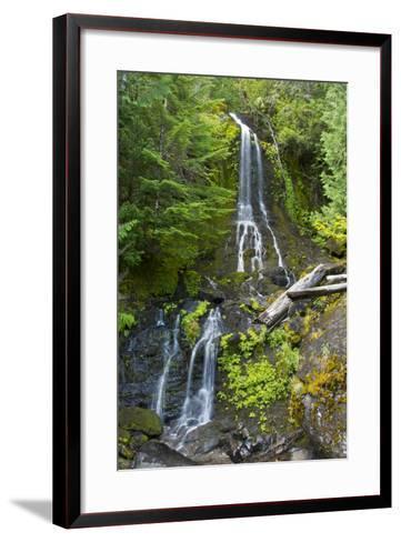 Falls Creek Falls, Mount Rainier National Park, Washington, USA-Michel Hersen-Framed Art Print
