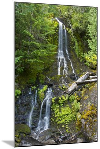 Falls Creek Falls, Mount Rainier National Park, Washington, USA-Michel Hersen-Mounted Photographic Print