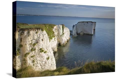 White Cliff and Harry Rock, Studland, Isle of Purbeck, Dorset, England-Brian Jannsen-Stretched Canvas Print