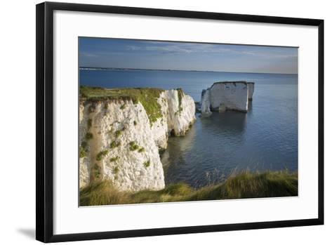 White Cliff and Harry Rock, Studland, Isle of Purbeck, Dorset, England-Brian Jannsen-Framed Art Print