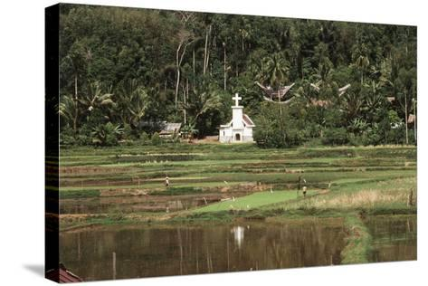 Asia, Indonesia, Sulawesi, View of Church and Field-Tony Berg-Stretched Canvas Print
