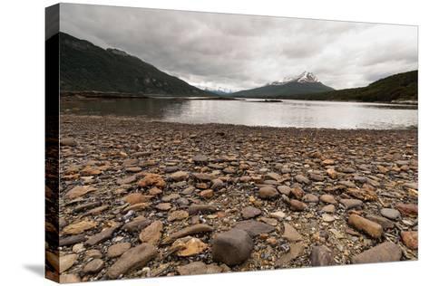 Shoreline Near Drake Passage, Tierra Del Fuego, Patagonia, Argentina-James White-Stretched Canvas Print