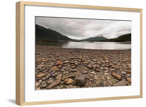 Shoreline Near Drake Passage, Tierra Del Fuego, Patagonia, Argentina-James White-Framed Art Print