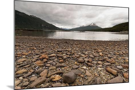 Shoreline Near Drake Passage, Tierra Del Fuego, Patagonia, Argentina-James White-Mounted Photographic Print