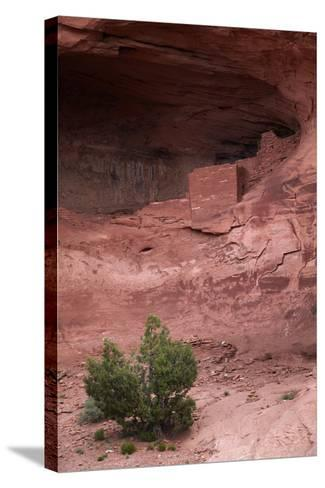 Navajo Nation, Monument Valley, Anasazi Cliff Dwelling, Mystery Valley-David Wall-Stretched Canvas Print