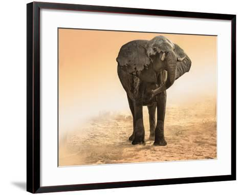 Artistic Rendition Elephant in Dust and Sunglow-Sheila Haddad-Framed Art Print