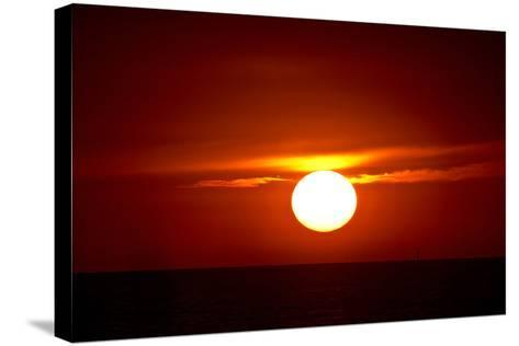 Florida, Siesta Key, Crescent Beach, Ball of Fire in a Red Sunset-Bernard Friel-Stretched Canvas Print