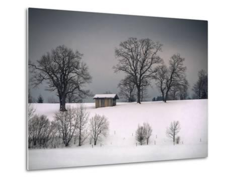 Winter Scene, Hill and Trees, Hut and Foreboding Sky-Sheila Haddad-Metal Print