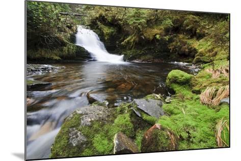 Small Cascade on Institute Creek, Wrangell Island Alaska-Design Pics Inc-Mounted Photographic Print
