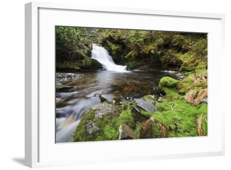 Small Cascade on Institute Creek, Wrangell Island Alaska-Design Pics Inc-Framed Art Print