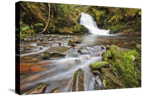 Small Cascade on Institute Creek, Wrangell Island Alaska-Design Pics Inc-Stretched Canvas Print