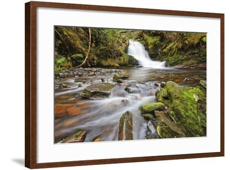 Small Cascade on Institute Creek, Wrangell Island Alaska-Design Pics Inc-Framed Art Print