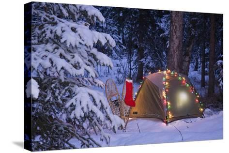 A Tent Is Set Up in the Woods with Christmas Lights and Stocking Near Anchorage, Alaska-Design Pics Inc-Stretched Canvas Print
