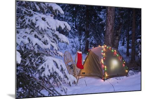A Tent Is Set Up in the Woods with Christmas Lights and Stocking Near Anchorage, Alaska-Design Pics Inc-Mounted Photographic Print
