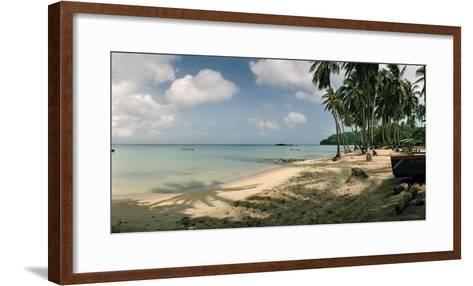 Palm Trees Line the Sandy Beach of South West Bay-Macduff Everton-Framed Art Print