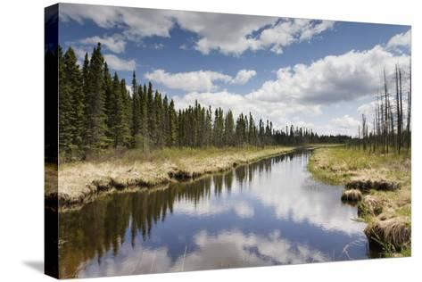 Clouds Reflected in a Tranquil River Lined with Trees; Thunder Bay, Ontario, Canada-Design Pics Inc-Stretched Canvas Print