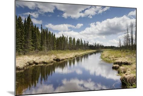 Clouds Reflected in a Tranquil River Lined with Trees; Thunder Bay, Ontario, Canada-Design Pics Inc-Mounted Photographic Print