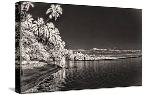 A Woman Walking Along Shoreline in Front of Kapuaiwa Palm Grove, Molokai Island-Richard A. Cooke Iii.-Stretched Canvas Print
