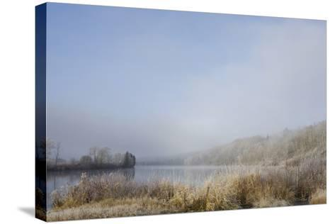 Frost on the Tall Grass Along the Shore of a Lake; Thunder Bay, Ontario, Canada-Design Pics Inc-Stretched Canvas Print